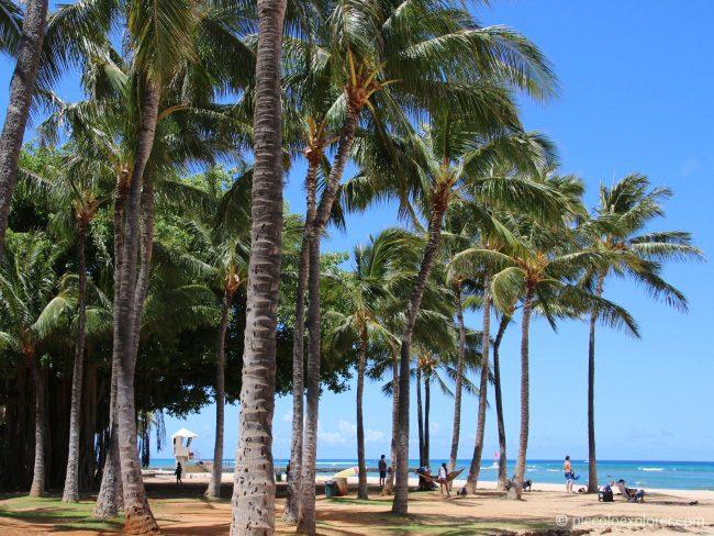 Walk along Waikiki Beach