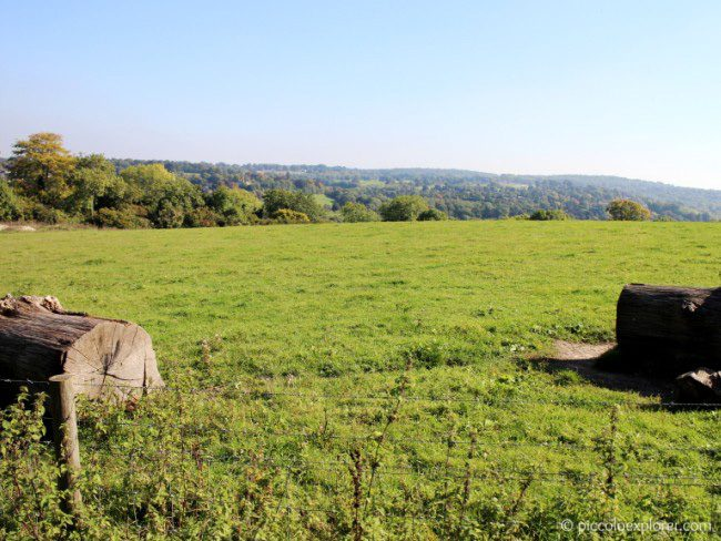 View of Surrey countryside from Bocketts Farm Park Surrey