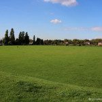 Dukes Meadows Park in Chiswick