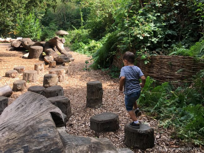 Log Trail, Kew Gardens London