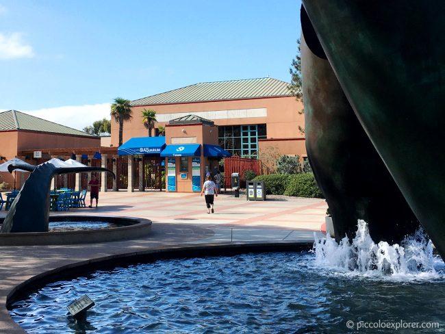 Birch Aquarium at Scripps, La Jolla CA