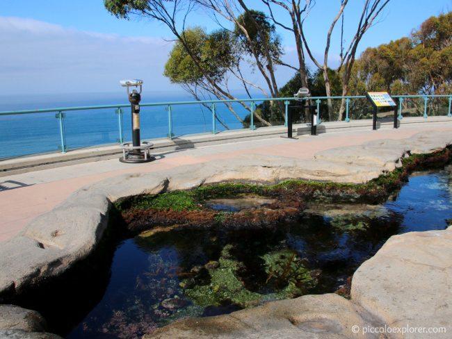 Birch Aquarium at Scripps, La Jolla San Diego CA