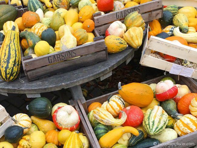 Gourds Garsons Farm Surrey