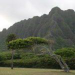 Kualoa Beach Park, Oahu
