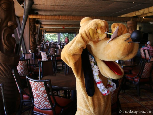 Pluto at 'Ohana Character Breakfast, Polynesian Village Resort, Walt Disney World